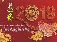 Công ty TNHH Hải Lâm chính thức giao dịch trở lại sau dịp Tết Nguyên Đán 2019